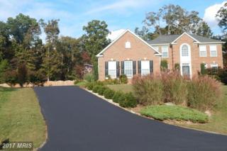 11330 Long Branch Way, Fredericksburg, VA 22408 (#SP9820169) :: Pearson Smith Realty
