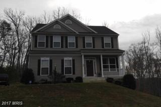 32 Noel Drive, Fredericksburg, VA 22408 (#SP9820623) :: LoCoMusings