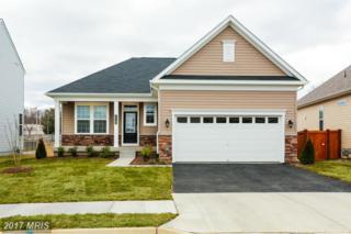 1722 Hudgins Farm Circle, Fredericksburg, VA 22408 (#SP9824126) :: Pearson Smith Realty