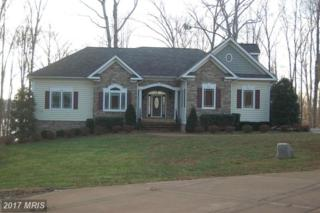 6723 Water View Lane, Mineral, VA 23117 (#SP9827813) :: Pearson Smith Realty