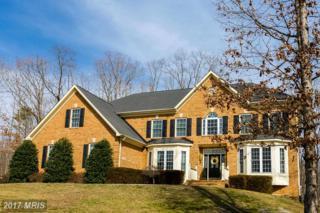 11925 Sawhill Boulevard, Spotsylvania, VA 22553 (#SP9868849) :: Pearson Smith Realty