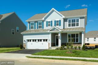 1723 Hudgins Farm Circle, Fredericksburg, VA 22408 (#SP9888250) :: Pearson Smith Realty