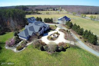 8920 Olde Meadow Way, Spotsylvania, VA 22551 (#SP9902724) :: Pearson Smith Realty