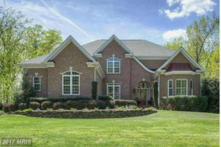 10802 Chatham Ridge Way, Spotsylvania, VA 22551 (#SP9910168) :: LoCoMusings