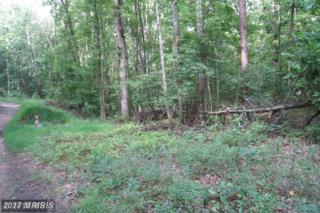Good Neighbor Lane, Fredericksburg, VA 22406 (#ST9506188) :: Pearson Smith Realty