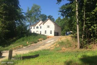 1603 Camp Geary Lane, Stafford, VA 22554 (#ST9750785) :: LoCoMusings