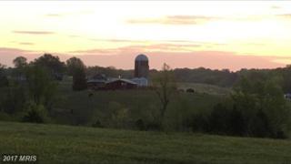 0 Belle Plains Road, Fredericksburg, VA 22405 (#ST9753132) :: LoCoMusings