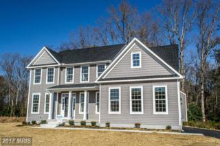 0 Belle Plains Road, Fredericksburg, VA 22405 (#ST9753396) :: Pearson Smith Realty
