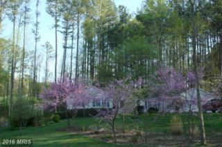 20 Cannon Knolls Drive, Fredericksburg, VA 22406 (#ST9765546) :: Pearson Smith Realty