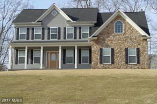 14 Bainbridge Court, Stafford, VA 22556 (#ST9836955) :: Pearson Smith Realty