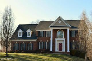 26 Marsh Run Road, Fredericksburg, VA 22406 (#ST9853406) :: Pearson Smith Realty