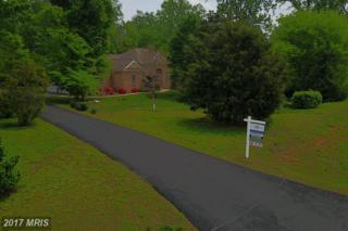 81 Indian View Court, Stafford, VA 22554 (#ST9884382) :: Pearson Smith Realty