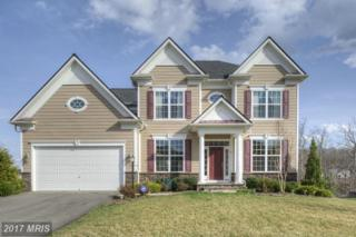 3 Founders Way, Stafford, VA 22554 (#ST9898578) :: Pearson Smith Realty
