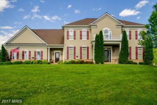 17 Stefaniga Farms Drive, Stafford, VA 22556 (#ST9912041) :: Pearson Smith Realty