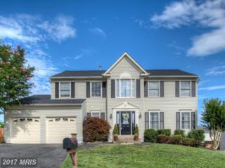 48 Brittany Lane Lane, Stafford, VA 22554 (#ST9945073) :: Pearson Smith Realty
