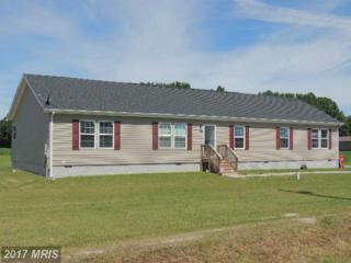 4889 Hartzell Road, Bridgeville, DE 19933 (#SU9698591) :: LoCoMusings