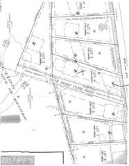 Bar Neck Road, Tilghman, MD 21671 (#TA9635499) :: Pearson Smith Realty