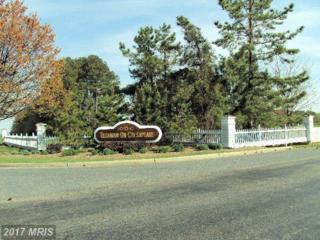 Island Club Road, Tilghman, MD 21671 (#TA9770080) :: LoCoMusings