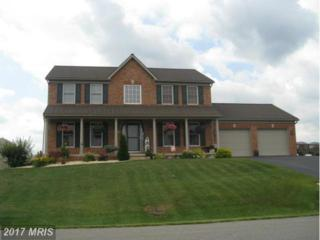 13930 Gossard Mill Road, Hagerstown, MD 21740 (#WA8559469) :: Pearson Smith Realty