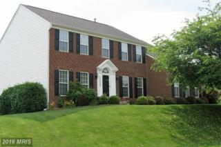 11025 Baldwin Drive, Hagerstown, MD 21742 (#WA9696747) :: Pearson Smith Realty