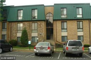 1030-302 Brinker Drive #302, Hagerstown, MD 21740 (#WA9706765) :: Pearson Smith Realty