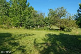21419 National Pike, Boonsboro, MD 21713 (#WA9775435) :: Pearson Smith Realty