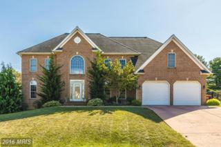 18703 Fountain Terrace, Hagerstown, MD 21742 (#WA9784929) :: Pearson Smith Realty