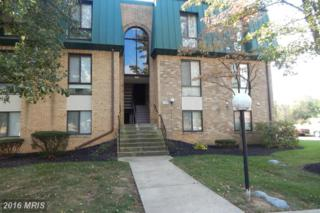 1034-202 Brinker Drive #202, Hagerstown, MD 21740 (#WA9795959) :: Pearson Smith Realty