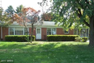 13915 Blue Mountain Drive, Maugansville, MD 21767 (#WA9799099) :: Pearson Smith Realty