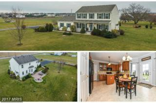 17126 Paps Lane, Hagerstown, MD 21740 (#WA9819716) :: Pearson Smith Realty