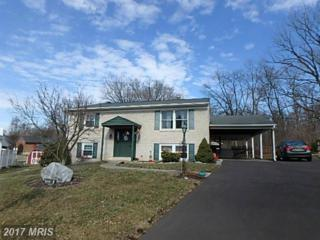 17708 Rockcrest Court, Hagerstown, MD 21740 (#WA9833487) :: LoCoMusings