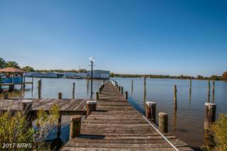 461 Harbor View Circle, Colonial Beach, VA 22443 (#WE8774751) :: LoCoMusings