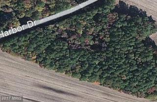 Glebe Harbor Drive, Montross, VA 22520 (#WE9728440) :: LoCoMusings