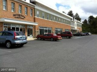 650 Cedar Creek Grove #106, Winchester, VA 22601 (#WI8594667) :: LoCoMusings