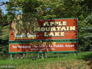 Apple Orchard, Linden, VA 22642 (#WR8490325) :: Pearson Smith Realty