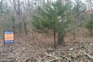 0 Panhandle Road, Front Royal, VA 22630 (#WR9605188) :: Pearson Smith Realty