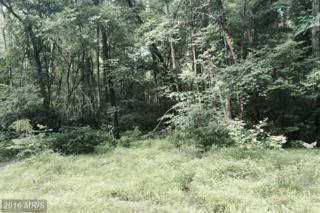 Whispering Pine Lane, Bentonville, VA 22610 (#WR9645278) :: Pearson Smith Realty