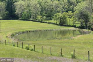 Gooney Manor Loop, Bentonville, VA 22610 (#WR9670594) :: Pearson Smith Realty