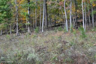 Lot 5, Core Drive, Front Royal, VA 22630 (#WR9693264) :: Pearson Smith Realty