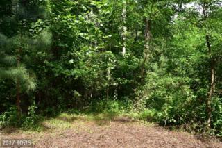 Rainbow Way, Front Royal, VA 22630 (#WR9717073) :: Pearson Smith Realty