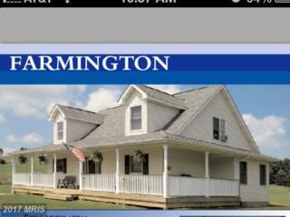 Gooney Manor Loop, Bentonville, VA 22610 (#WR9762706) :: Pearson Smith Realty
