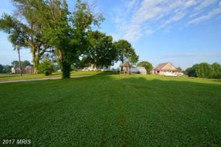 800 Walnut Hill Farm Drive, Davidsonville, MD 21035 (#AA8665257) :: Pearson Smith Realty