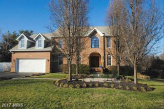 1202 Cherry Tree Lane, Annapolis, MD 21403 (#AA9749814) :: Pearson Smith Realty