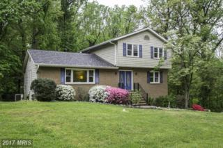 1620 Bald Eagle Road, Arnold, MD 21012 (#AA9775799) :: Pearson Smith Realty