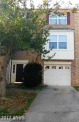 1118 Brassie Court, Arnold, MD 21012 (#AA9800010) :: LoCoMusings