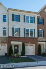 509 Deep Creek View, Annapolis, MD 21409 (#AA9807624) :: Pearson Smith Realty