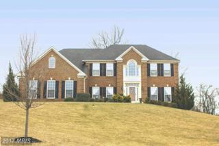 195 Fawn Hill Road, Hanover, PA 17331 (#AD9753344) :: LoCoMusings