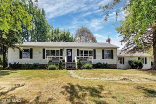 1649 Barlow Two Taverns Road, Gettysburg, PA 17325 (#AD9757526) :: Pearson Smith Realty