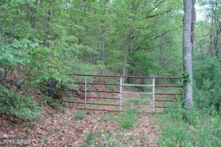 Lower Town Creek Road, Oldtown, MD 21555 (#AL8633288) :: Pearson Smith Realty