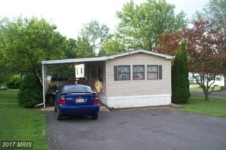 14120 Cunningham Drive, Cumberland, MD 21502 (#AL9689553) :: LoCoMusings